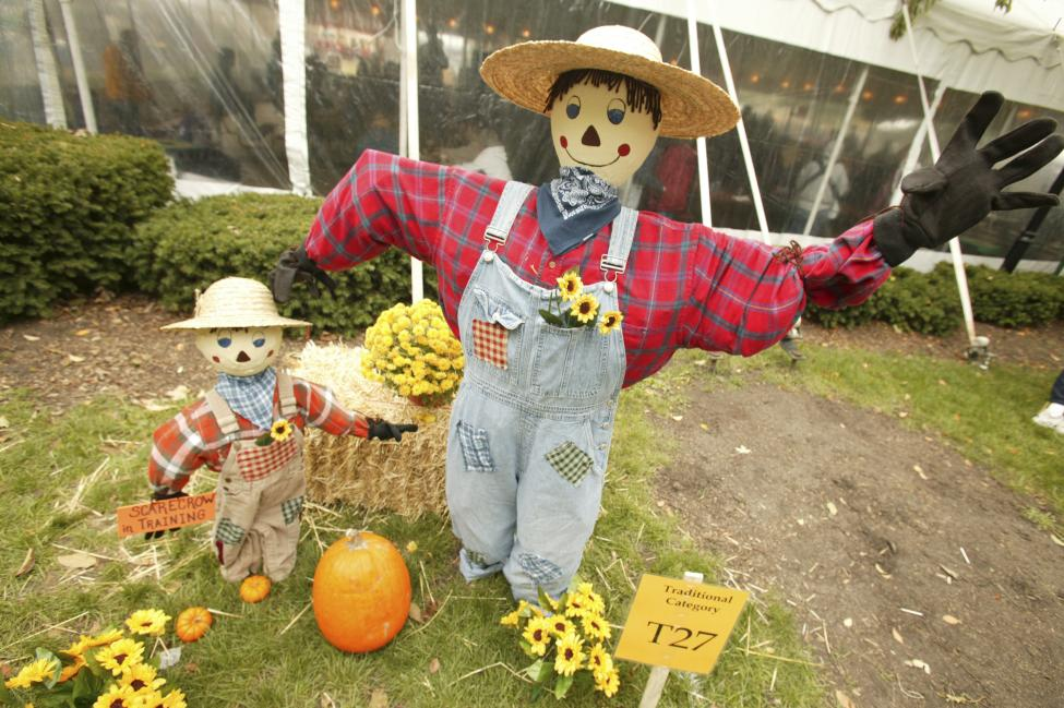scarecrow - Scarecrow - Philippine Photo Gallery